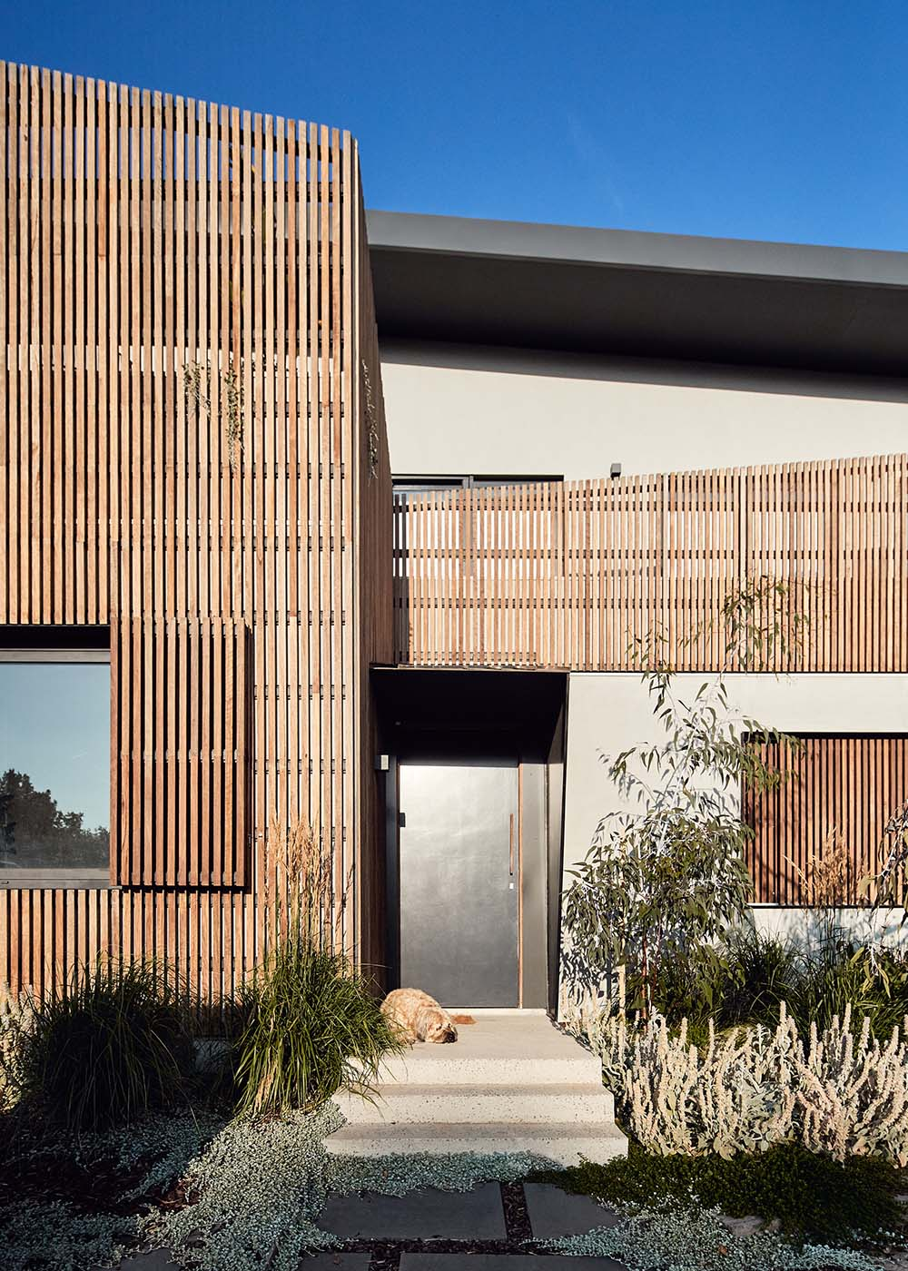 architects northcote melbourne 47