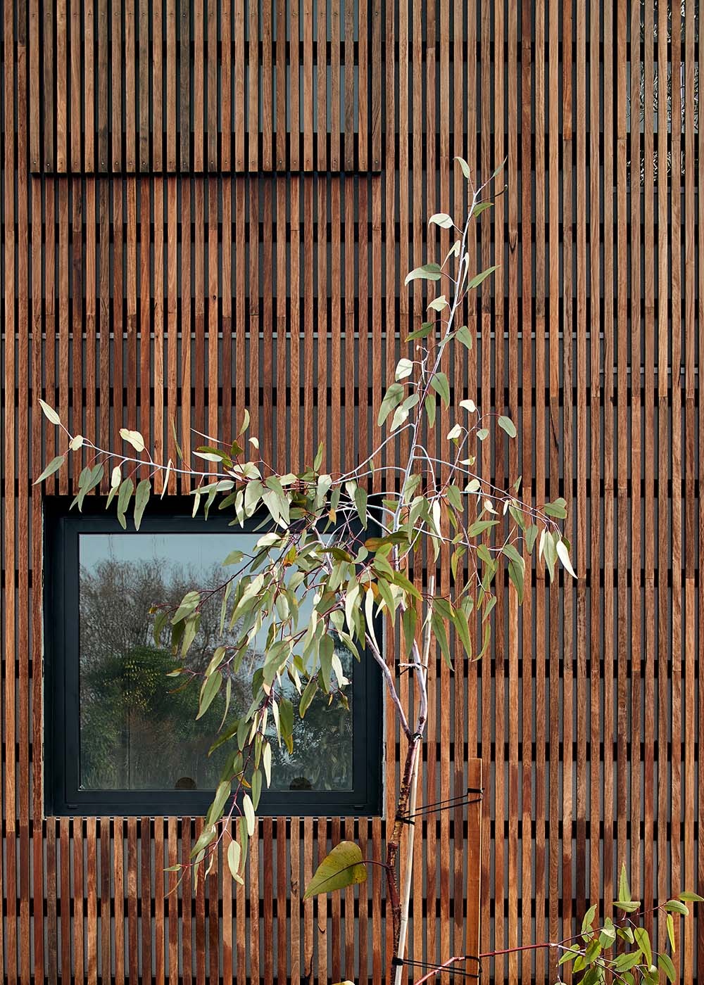 architects northcote melbourne 39