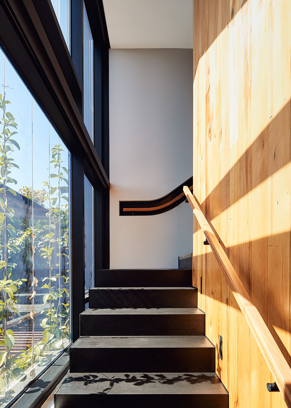 architects northcote melbourne 50